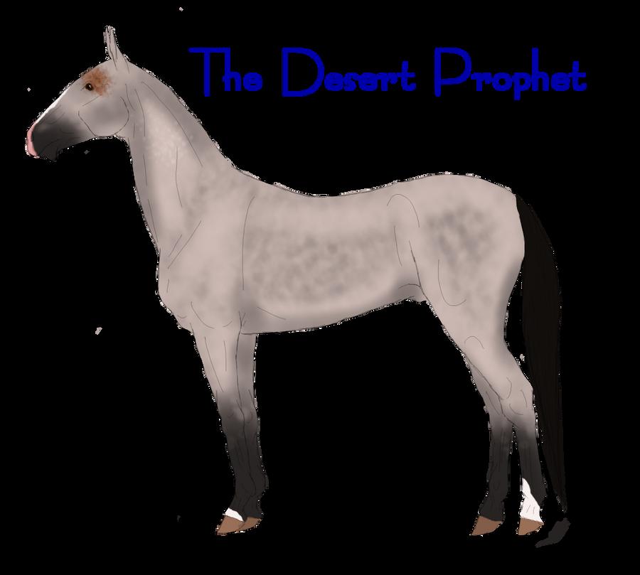The Desert Prophet-Ref by Secret-Z