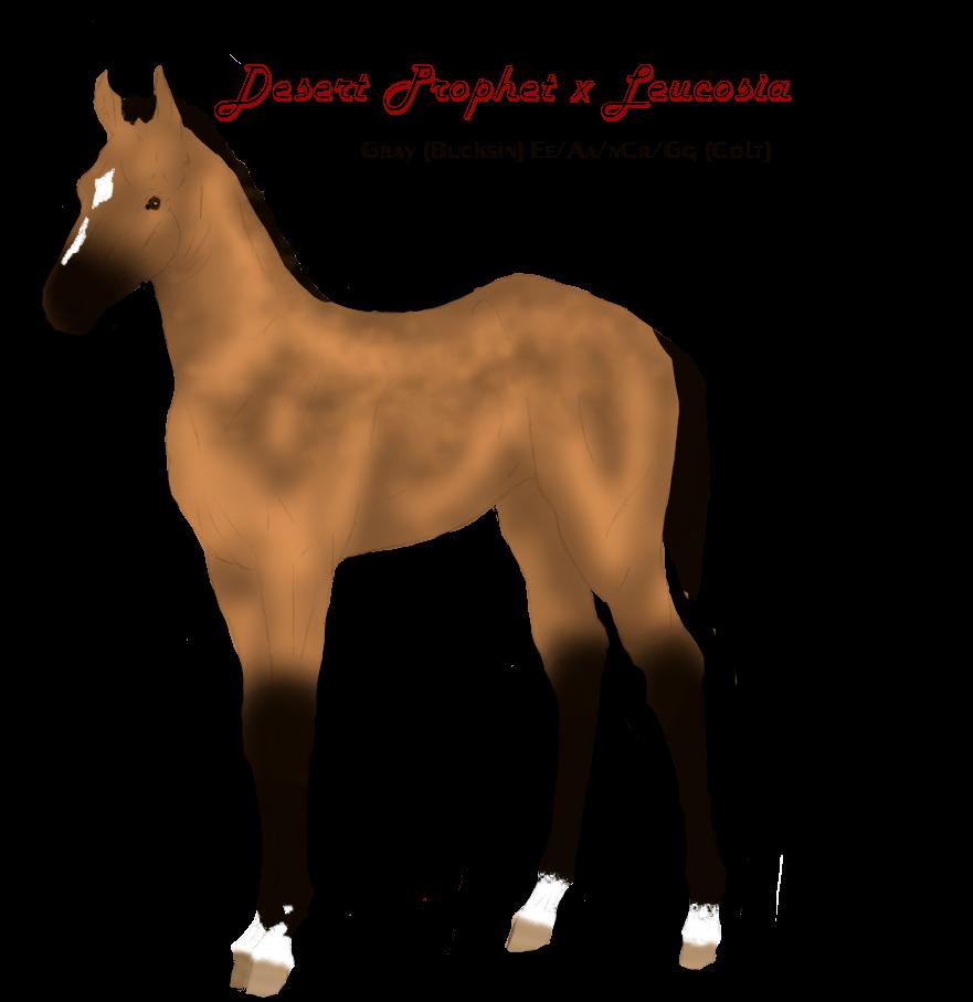 Leucosia x Desert Prophet Bloodline Auction by Secret-Z