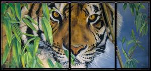 Tiger triptych by IrenaDem