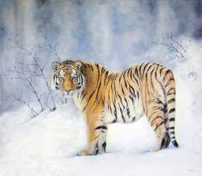 Siberian tiger by IrenaDem