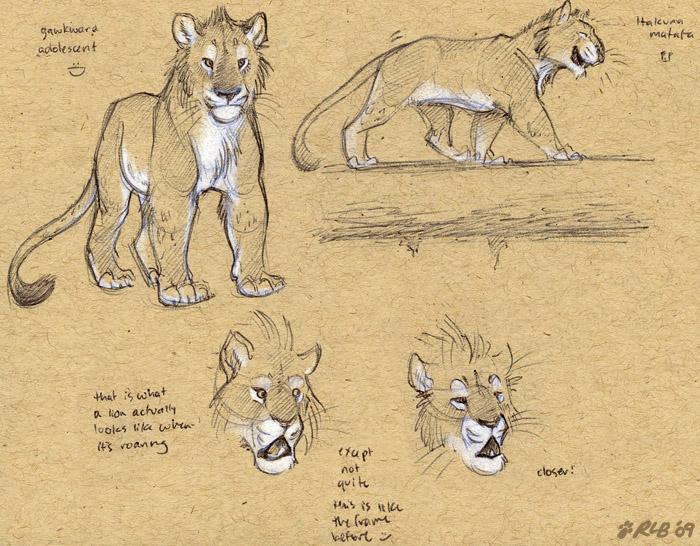 Adolescent lion doodles by Kobb on DeviantArt