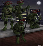 Turtles on Rooftop - color