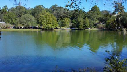 Lake Ella - 2 Oct 2011 - 1
