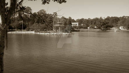Lake Ella - 2 Oct 2011 - 4
