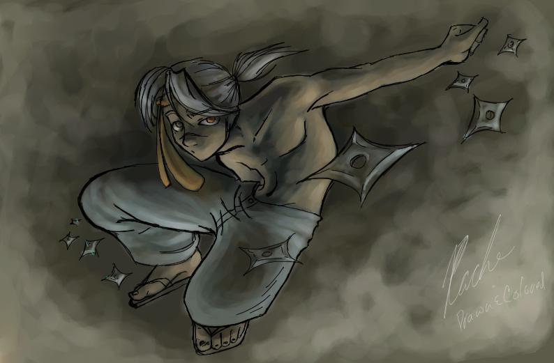ninja by rachelle