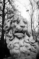 Jardin des rois 2 by NickyLarson