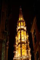 Bruxelles in Night by NickyLarson