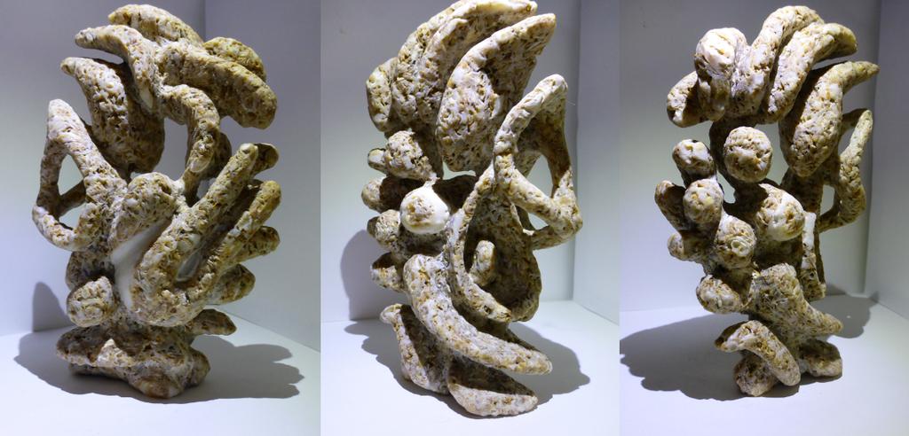 Coquina Rock Sculpture by GiraffeRave