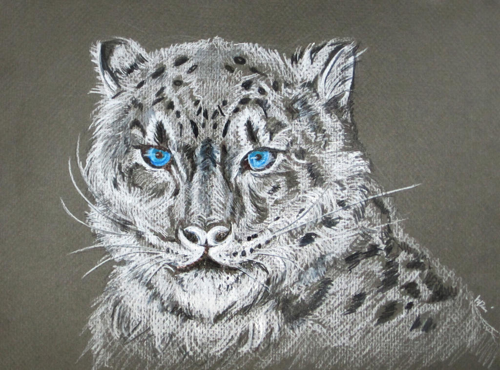 Snow Leopard by kremlindusk