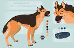 Daniel {reference sheet} by Fewtish