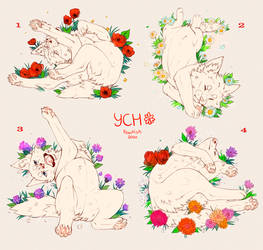 Field of Flowers {YCH CLOSED}