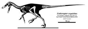 Exquisite Linheraptor