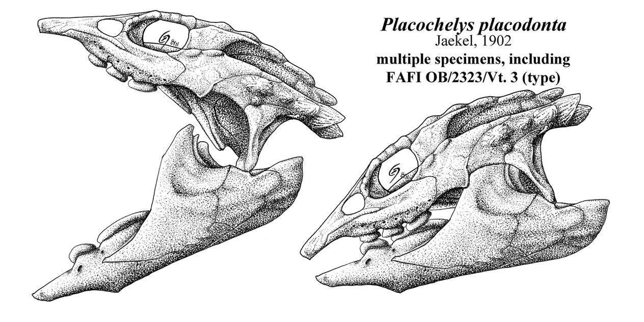 Triassic Palate Mashers by Qilong
