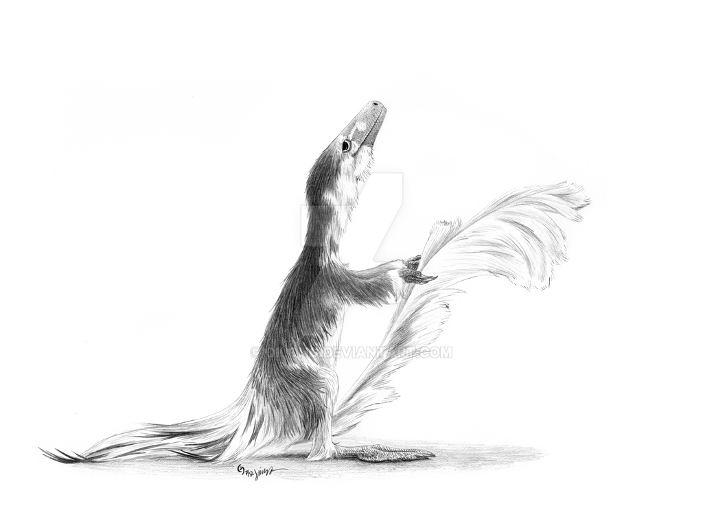 The Squirrel Immitator by Qilong