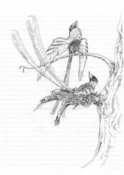 [Sketch] Confuciusornis As A Pair