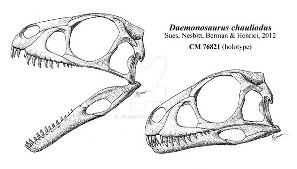 Skull of the Demon of the Chinle