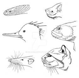 Those Who Eat Fish
