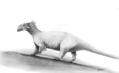 Fluffy Ankylosaur