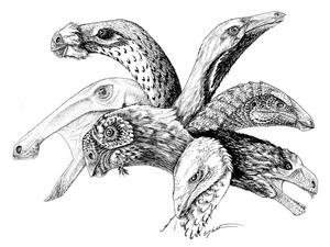 Theropod Herbivores
