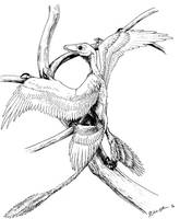Microraptor Climbing by Qilong