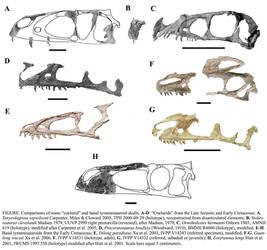 Despotosaurs, Kith and Kin by Qilong