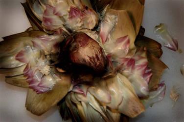 artichoke heart by lizzybee