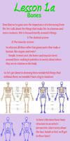 Lesson 1.a - the breakdown on bones