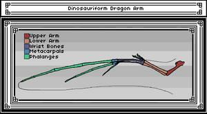 Dinosauriform Dragon Arm