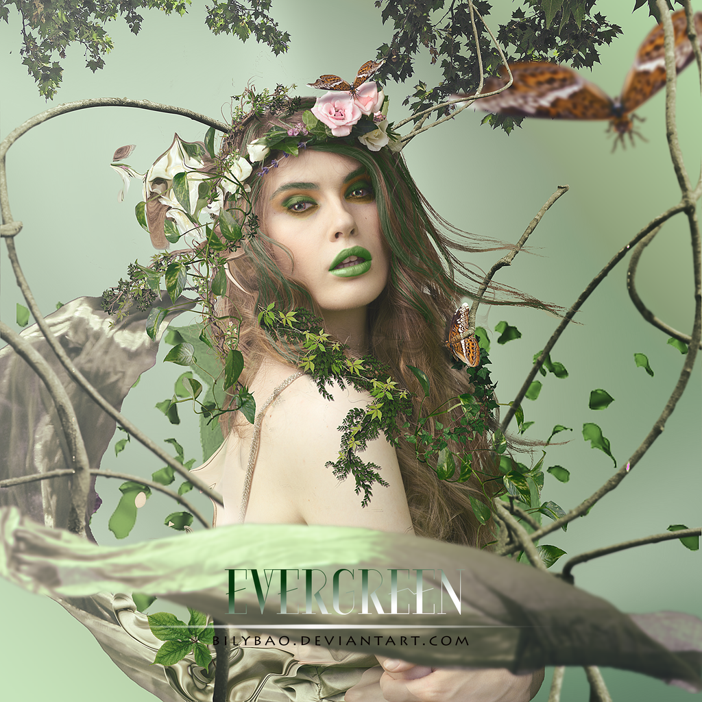 Evergreen by BiLyBao
