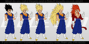 All Forms of Vegetto.