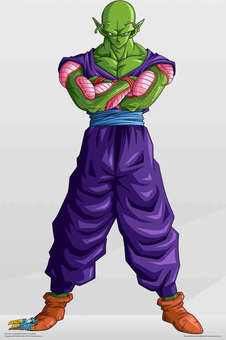 Piccolo___Commision__by_2D75.jpg
