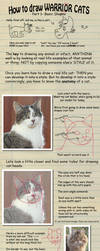 How to draw Warrior Cats pt 1 by heylorlass