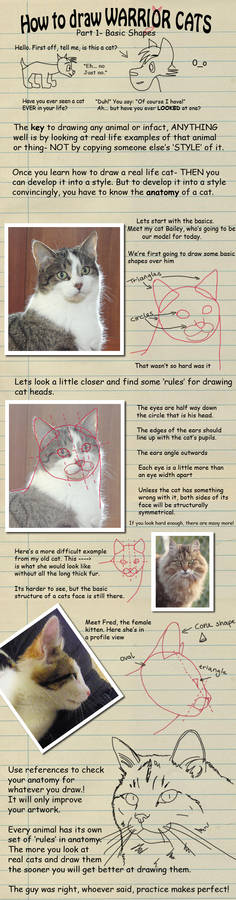 How to draw Warrior Cats pt 1