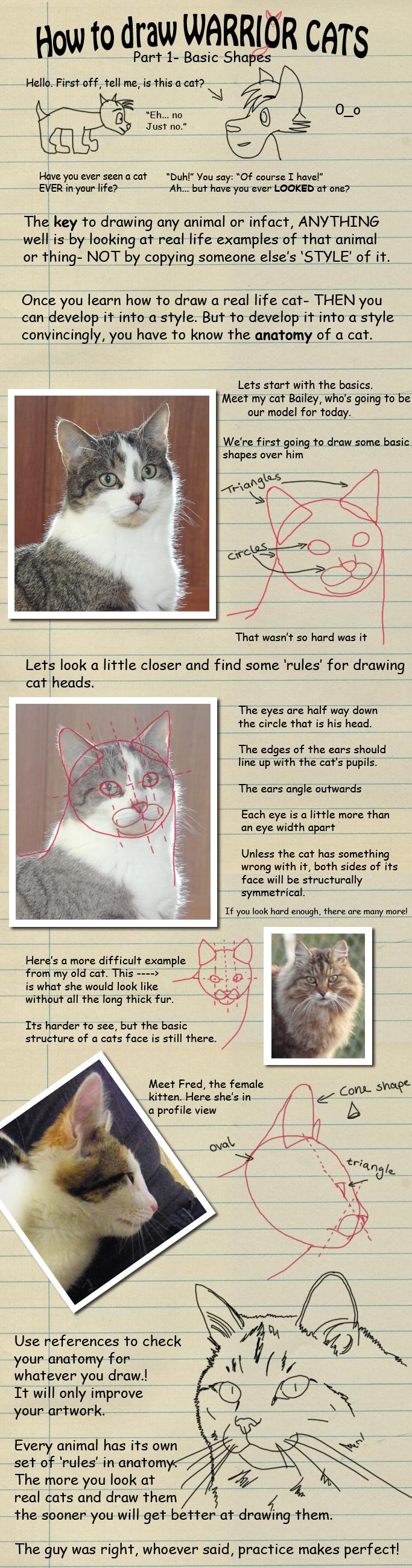 Heylorlass 2,142 123 How To Draw Warrior Cats Pt 1 By Heylorlass