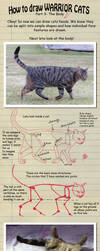 How to draw Warrior Cats pt 3 by heylorlass