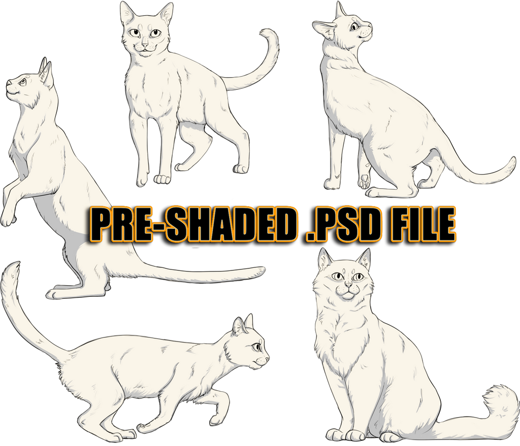 Ready to Colour, Pre-Shaded Cat Pack