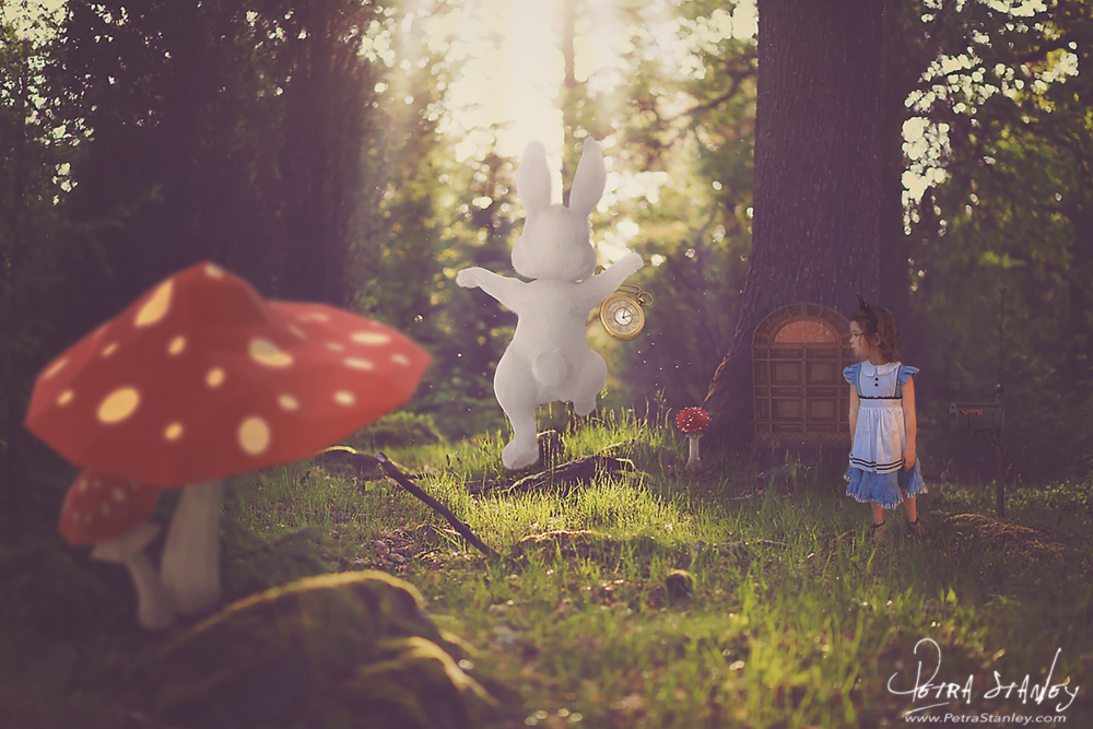 LR-Child-Example-Alice-in-Wonderland-1-Digital-Bac by PetraStanleyArt