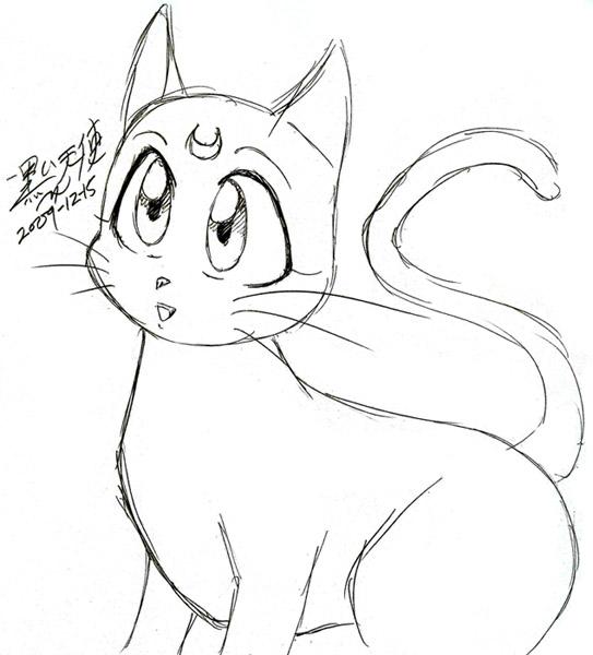 Cat Sailor Moon White
