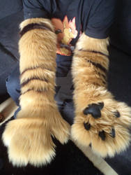 New Fursuit parts: Armsleeves