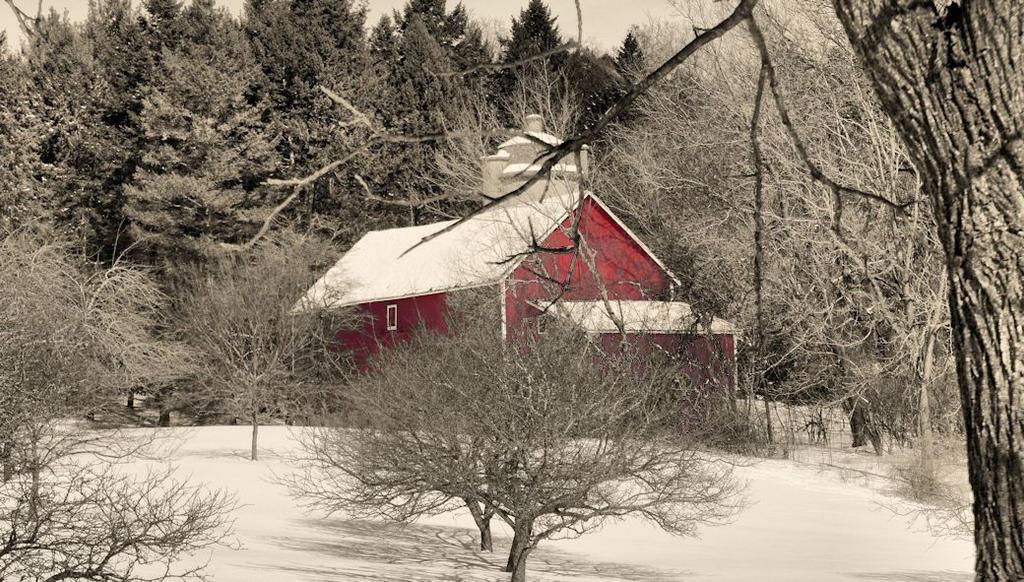 Red Barn Grey World 2 by camera-buff