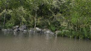 Lake cpu-only-2hr