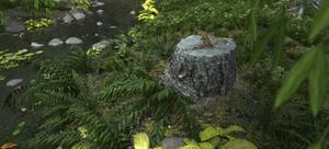 Willow Creek Sun Squirrel