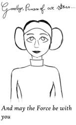Princess Leia, Legend of the galaxy