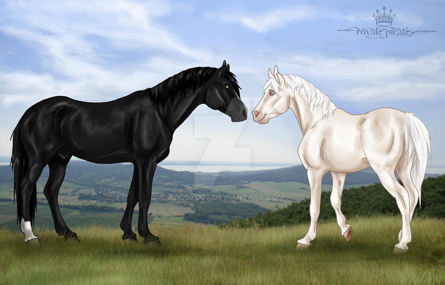 Black and White by abosz007