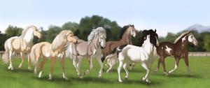 Re-United Herd