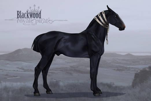 RPS Blackwood