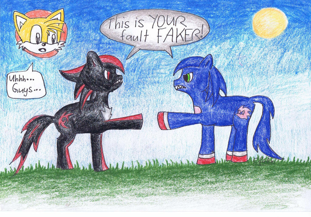 sonic and shadow: the pony ray accident by EstorianTheCat ...