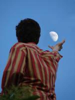 save the Moon by CsUrsaMaior