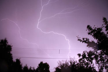 2009-06-10 vihar2