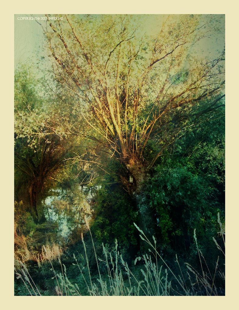 Memories by Inferiae